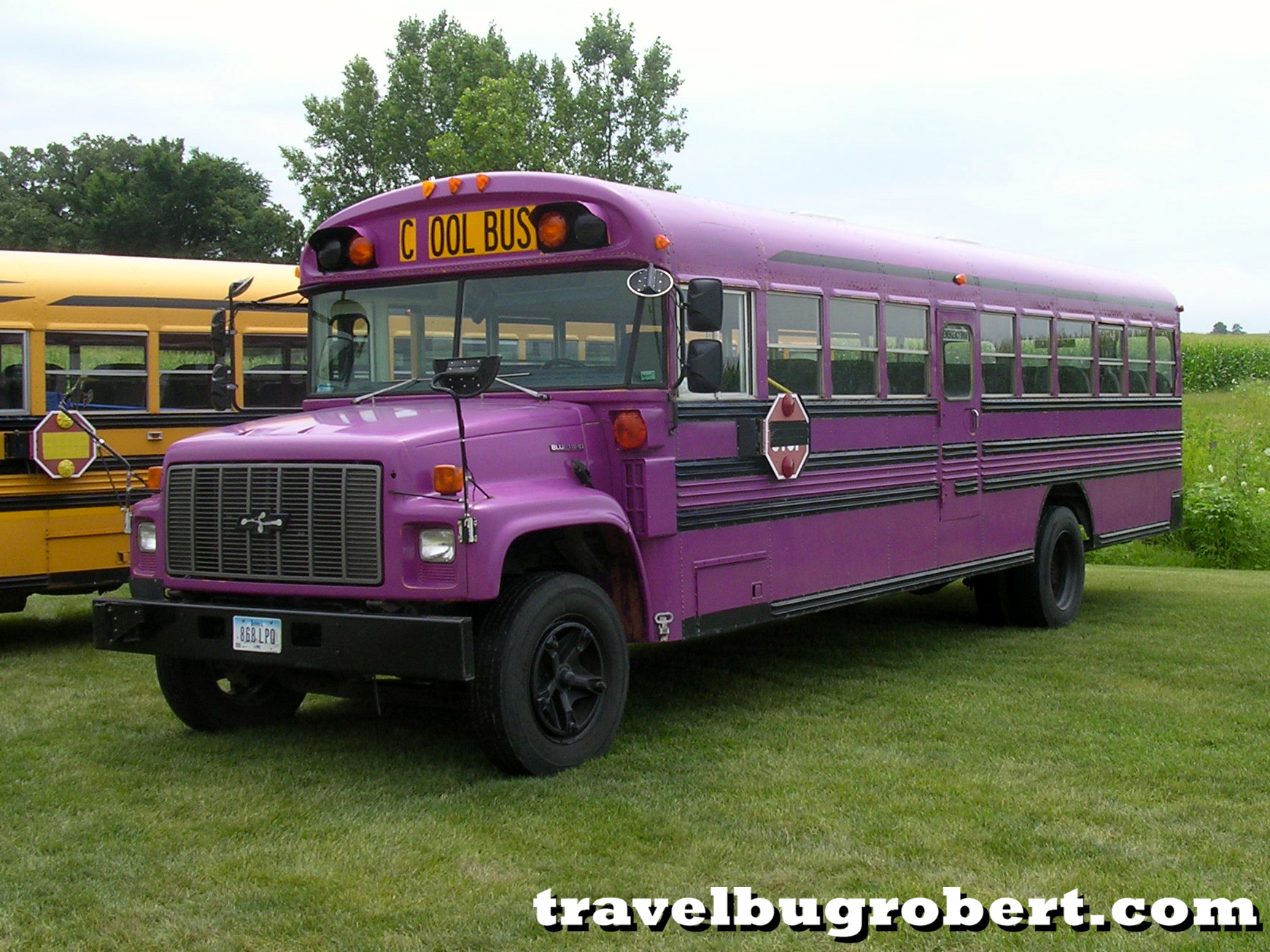 Blue Bird Bus >> Purple School Bus | www.imgkid.com - The Image Kid Has It!